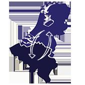België Nederland Sneltransport